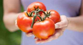 Are Tomatoes Bad for Arthritis?