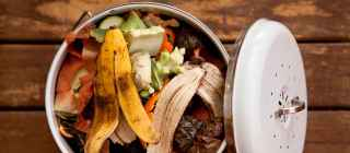 food waste in trash can